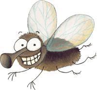 mosquito3.JPG